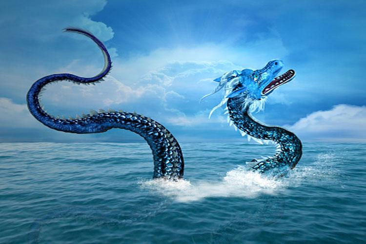3 choses à savoir avant d'acheter un dragon d'eau