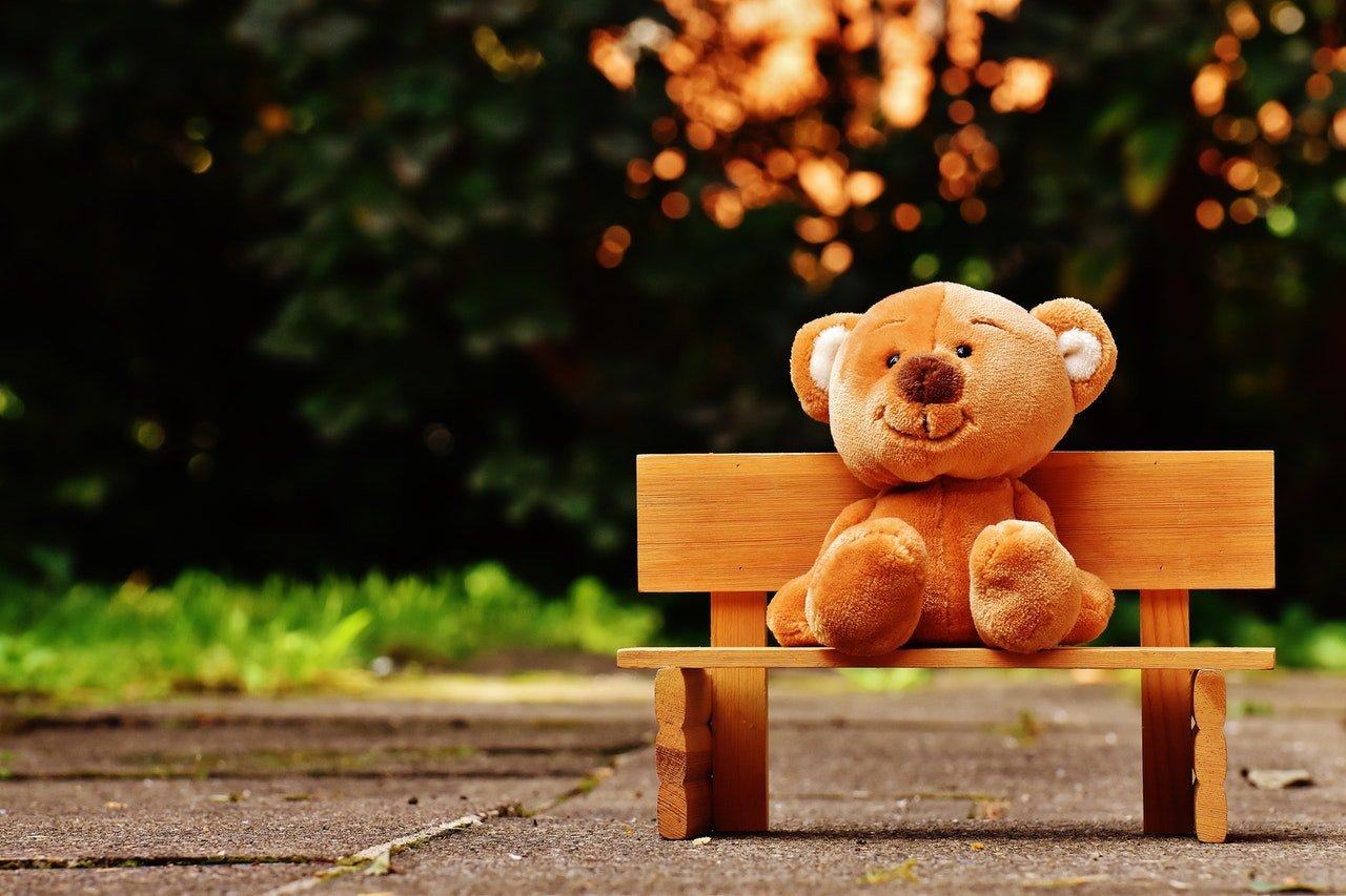 5 accessoires d'ours à avoir chez soi